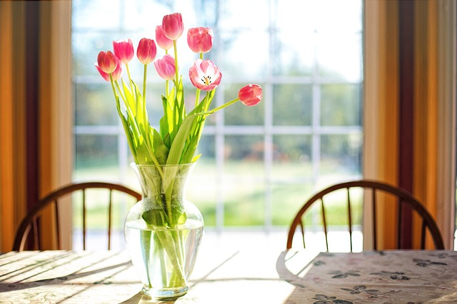 čertsvé tulipány